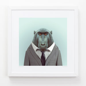 Macaque Art Print - animals & wildlife