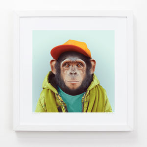 Chimpanzee Art Print - animals & wildlife