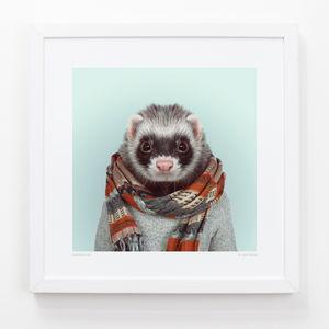 Ferret Art Print - animals & wildlife