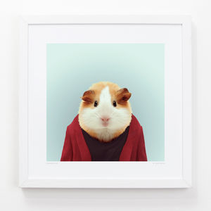 Guinea Pig Art Print - animals & wildlife