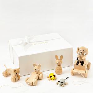 Wooden Toys Gift Box