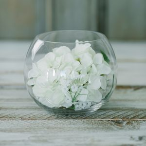 Hydrangea Glass Bowl - flowers & plants