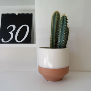 Dipped Plant Pot
