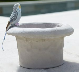 Concrete Top Hat Bird Bath - gardening
