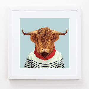 Scottish Cow Art Print - animals & wildlife