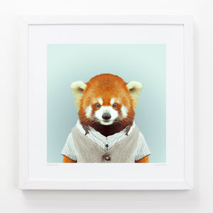Red Panda Art Print - animals & wildlife