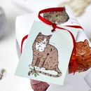 Tabby Cat Christmas Tags