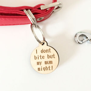 'I Don't Bite But' Dog Collar Charm - dog tags & charms