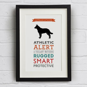 Australian Cattle Dog Breed Traits Print