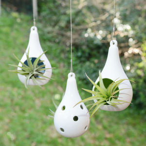 Hanging Ceramic Tealight Holder Air Plant Terrarium - flowers & plants