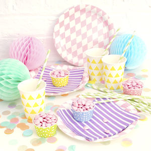 Party Tableware Set - picnics & barbecues