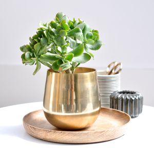 Gold Vase Pot