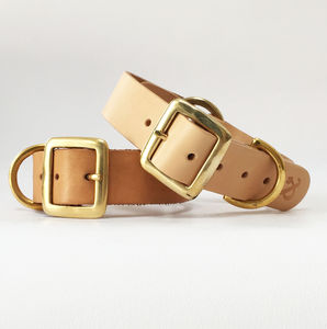 Vegetable Tanned Leather Dog Collar - dogs