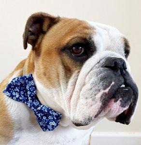 Oriental Flower Dog Bow Tie - whatsnew