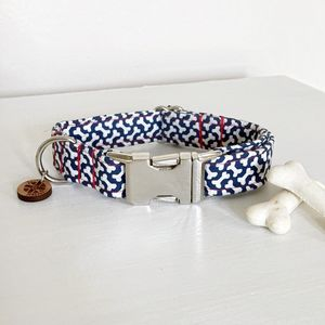 Here Boy Bones Dog Collar