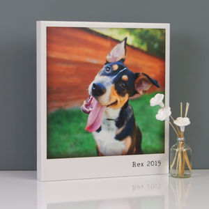Personalised Vintage Polaroid Pet Canvas - pet portraits
