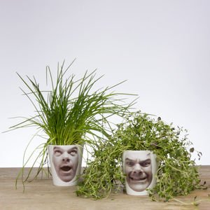 Personalised Face Plant Photo Plant Pot - gifts for him