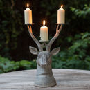 Grand Stag Head Candle Holder
