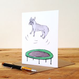 Schnauzer On A Trampoline Personalised Greeting Card
