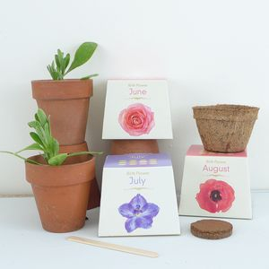 Grow Your Own Birth Flower - 60th birthday gifts