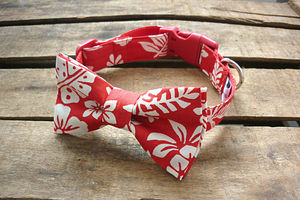 Tropical Dog Bowtie - dog collars