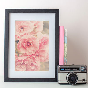 Roses In The Park Textured Photographic Print - nature & landscape