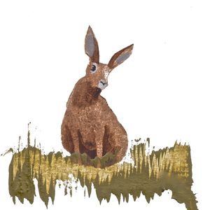 Limited Edition Print Hare