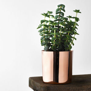 Copper Flower Pot - on trend: copper