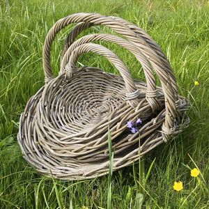 Willow Flower And Vegetable Basket - flowers & plants