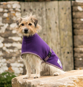 Fleece Dog Coat - clothing & accessories