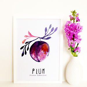 Watercolour Plum Art Print - less ordinary children's room
