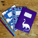 Set Of Three Dinosaur Notebooks