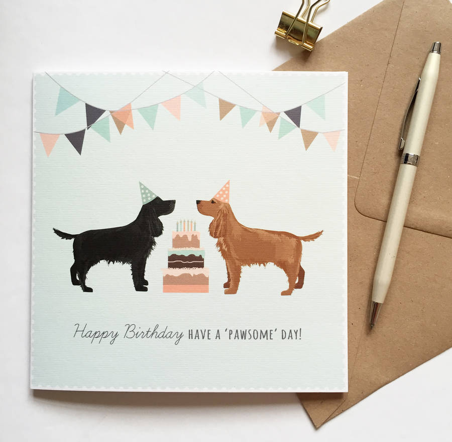 cocker spaniel happy birthday card by sirocco design