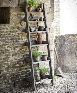Provence Ladder Shelf - garden structures