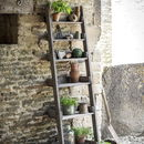 Provence Ladder Shelf