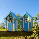 Beach Hut Bird Box - Blue Verditer