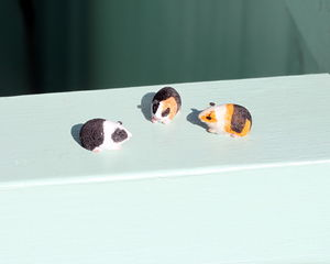 Guinea Pigs Magical Door Accessory