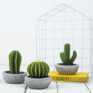 Cactus Candle - candles & candle holders