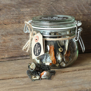 Salmon Skin Dog Treats Jar - treats & food
