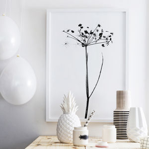 Plant Hogweed Print - update your walls