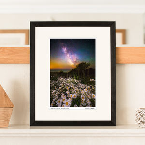 'Daisies Under A Starlit Sky' Milky Way Print - photography & portraits