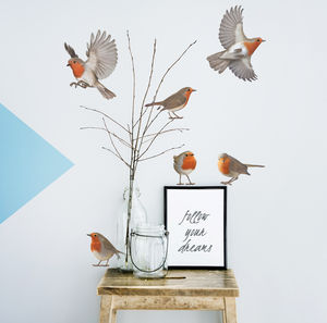 Robin Vinyl Wall Sticker Set