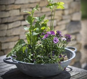 Table Top Galvanised Planter - pots & planters