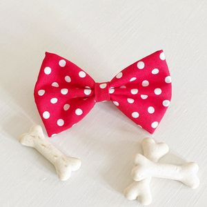 Polka Dot Dog Bow Tie - clothes & accessories