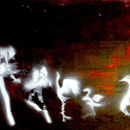 Swan Lake Sequence Stencil