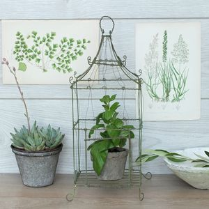 Medium Botanical Wire Bird Cage