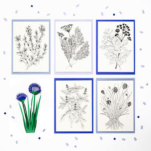 Set Of Five Illustrated Herb Recipe Notecards