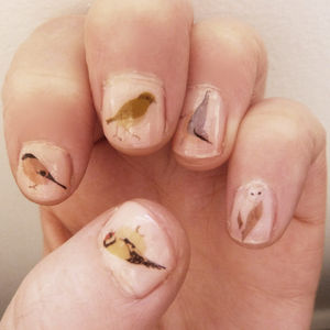 Bird Nail Art Stickers