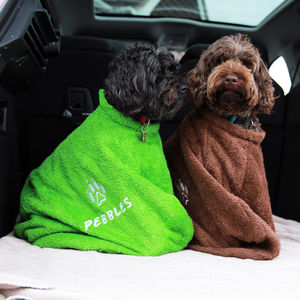 Personalised Towelling Dog Coat - dogs