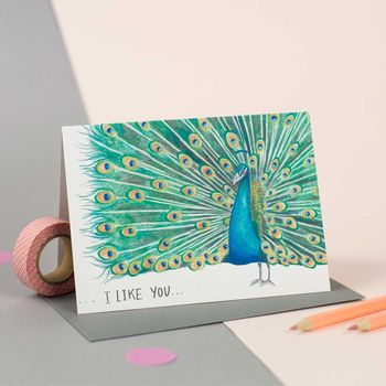 'I Like You' Illustrated Peacock Card